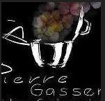 logo-solution-gastronomique-pierre-gasser